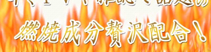 燃焼成分5種追加配合2
